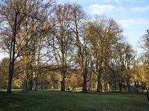 公园在巴特洪堡 德国 免版税库存图片