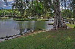 公园在Hilo 免版税图库摄影
