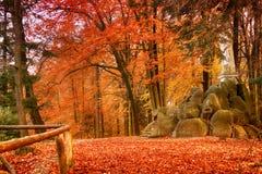 公园在Kromlau,萨克森,德国 惊奇,五颜六色的秋天backg 库存照片