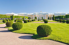公园在Peterhof 图库摄影