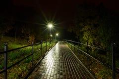 公园夜灯笼灯:胡同走道的看法,路在有树的一个公园和黑暗的天空作为在夏天eveni的背景 免版税图库摄影