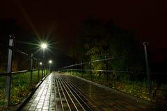 公园夜灯笼灯:胡同走道的看法,路在有树的一个公园和黑暗的天空作为在夏天eveni的背景 免版税库存图片