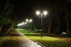 公园夜灯笼灯:胡同走道的看法,路在有树的一个公园和黑暗的天空作为在夏天eveni的背景 免版税库存照片