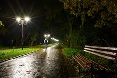 公园夜灯笼灯:胡同走道的看法,路在有树的一个公园和黑暗的天空作为在夏天eveni的背景 库存照片
