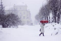 公园妇女红色伞形树雪冬天 免版税库存照片