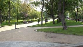 公园弗拉基米尔小山在基辅在春天 影视素材