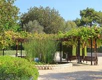 公园拉马特甘Hanadiv, Zichron Yaakov,以色列 免版税图库摄影
