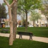 公园方式 图库摄影