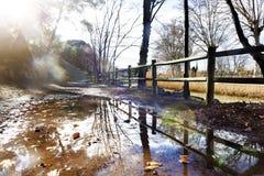 公园日落 在水水坑的反射 免版税库存图片