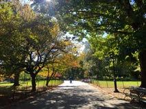 公园时间 库存照片