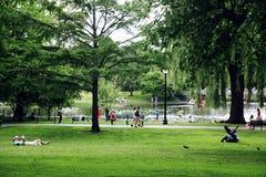 公园星期天 库存图片