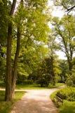 公园春天 免版税图库摄影