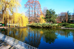 公园是放松和休闲的一个美妙的地方 免版税库存照片