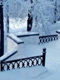 公园栏杆冬天 免版税图库摄影