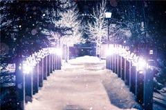公园桥梁在冬天 库存图片