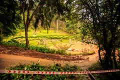公园池塘在大雨以后被充斥的大阳台走道在热带 库存照片