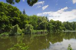 公园池塘 库存照片