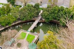 公园池塘 免版税库存照片