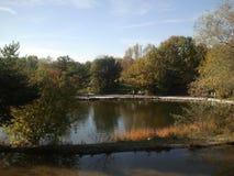 公园泉水 库存图片