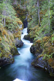 公园瀑布 免版税库存图片