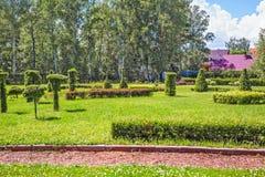 公园的区域装饰仿照修剪的花园艺术样式 Sibe 库存图片