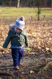 公园的男孩 库存照片