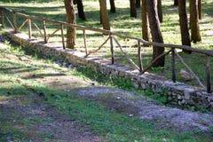 公园的篱芭 免版税图库摄影