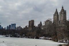 从公园的UWS 库存图片