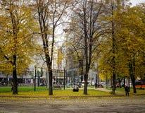 公园秋天在莫斯科,俄罗斯 免版税库存图片