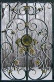 公园篱芭的片段搽粉与霜 免版税库存图片