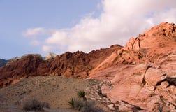 公园红色岩石 库存图片