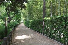 公园绿色在日本的冈山 库存图片
