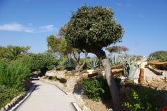 公园罗得岛希腊 免版税库存图片