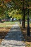 公园胡同在一晴朗的10月天 免版税库存照片