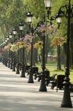 公园胡同 免版税图库摄影