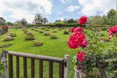 公园西万提斯,玫瑰园,巴塞罗那 库存照片