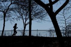 公园赛跑者 库存图片