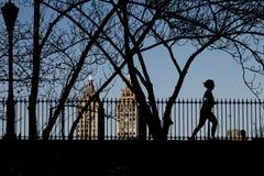 公园赛跑者 免版税库存照片