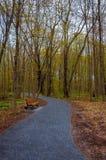 公园足迹在春天 免版税库存图片
