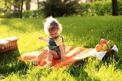 公园野餐 免版税库存图片