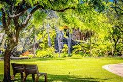 公园长椅在一个豪华的绿色庭院里 库存图片