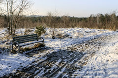 公园长椅在多雪的乡下 图库摄影