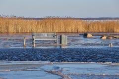 公园长椅在德国的北部的一个冷的冬日 库存图片