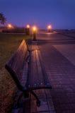 公园长椅在早晨雾期间的Trois-Rivieres,魁北克 库存照片