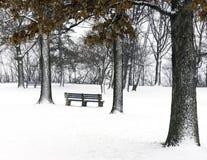 公园长椅在高积雪的树和风景下 免版税库存图片