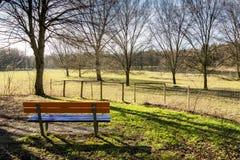 公园长椅有视图 库存照片