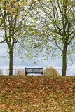 公园长椅 免版税图库摄影