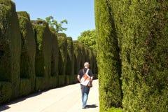 公园阿尔罕布拉宫,格拉纳达,西班牙 库存图片