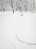 公园降雪 免版税库存图片
