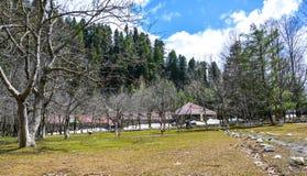 公园风景看法Naran谷的,巴基斯坦 库存照片